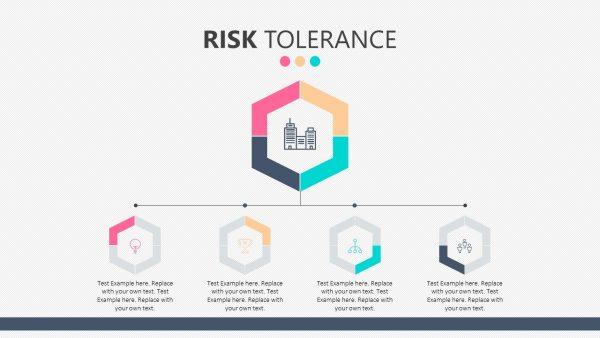 Risk Tolerance PPT