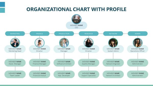 Organizational Chart with Profile