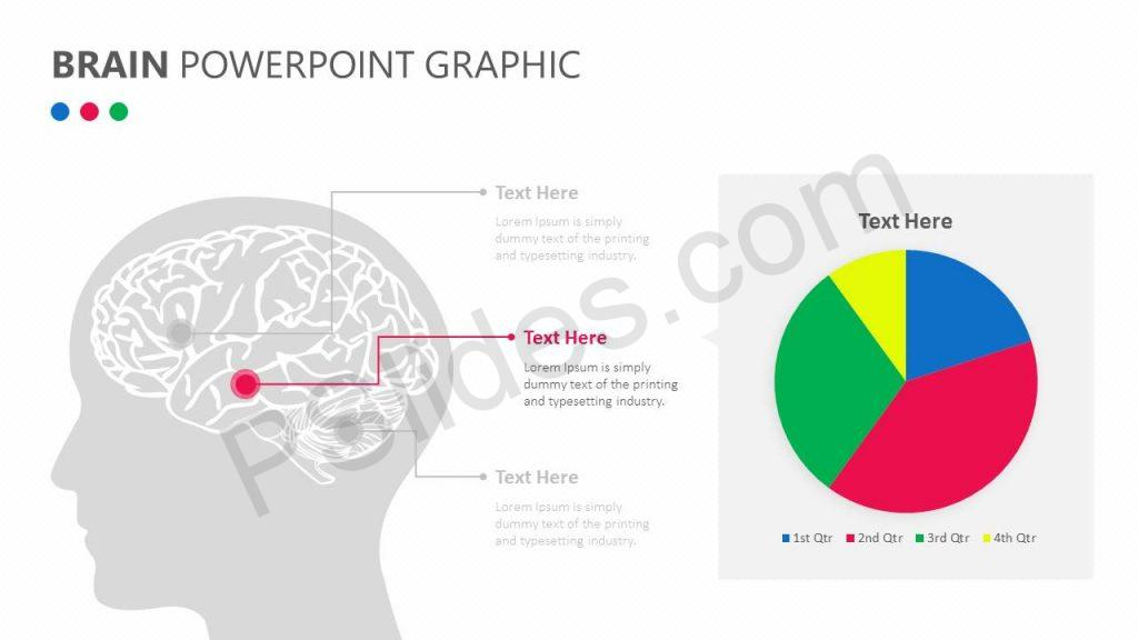 Brain PowerPoint Graphic