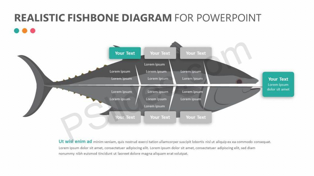 Realistic Fishbone Diagram for PowerPoint Slide2