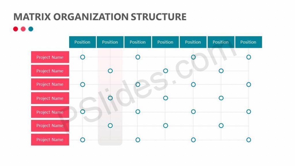 Matrix Organization Structure Slide3
