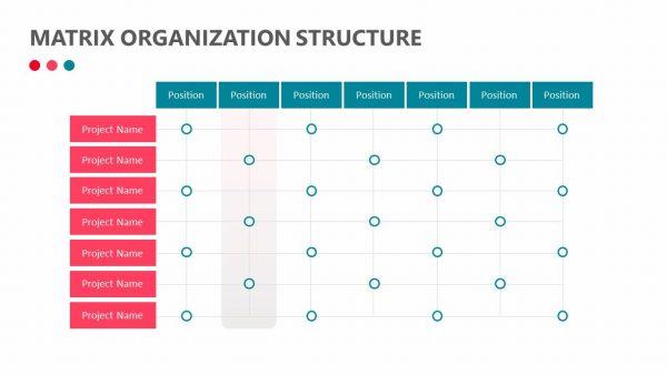 Matrix Organization Structure Slide 3